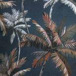 Havana_Palmeira_Azul_